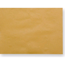 TOVAGLIETTE 30X40 INFIBRA CARTA PAGLIA 500PZ X 2CF X CT - PERS.